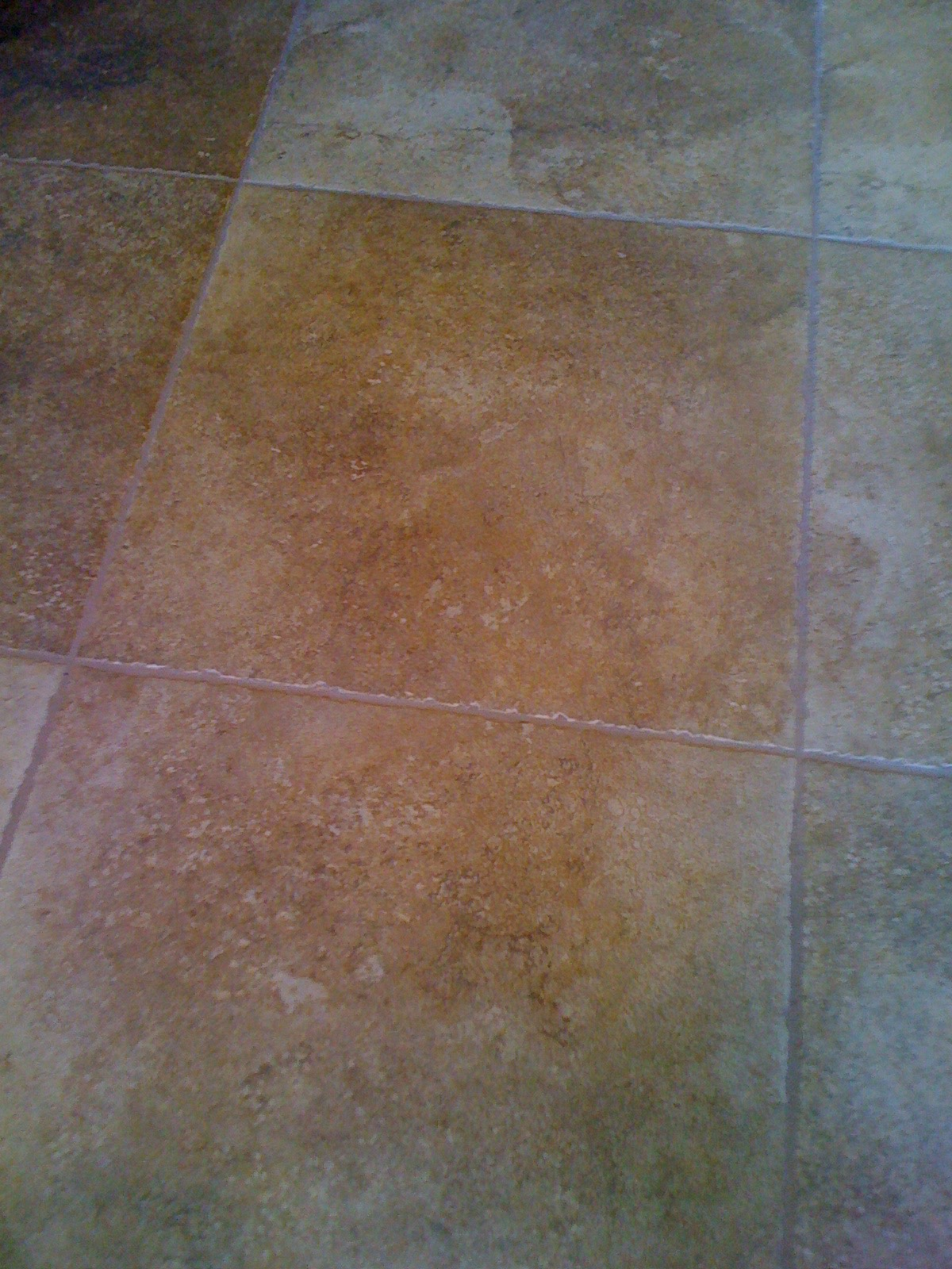 Porcelain tile & grout AFTER cleaning and color sealing - Photo